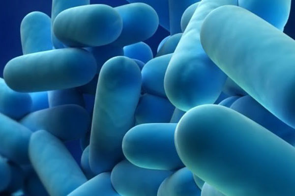 Legionella Risk header image